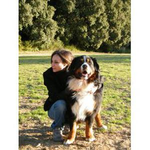 Entreprise Anigarde : Promeneuse pour chiens & Visites à domicile