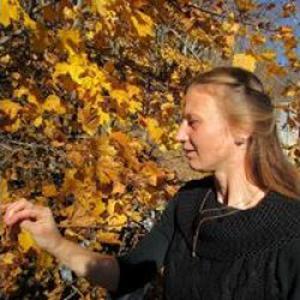 Prof de la dance donne les cours particuliers Diana, 33 ans