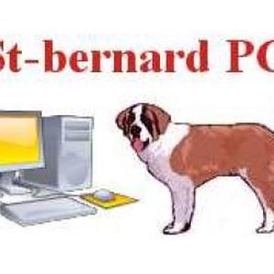 Photo de St-bernard PC