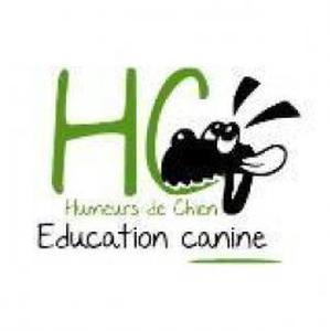 Education canine à domicile