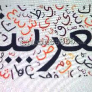 Donne de cours d'arabe