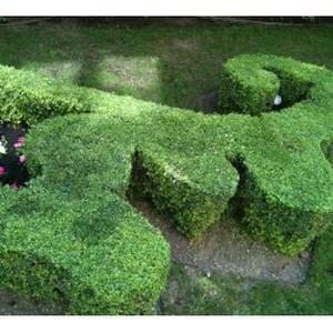 Jardinier paysagiste a votre service