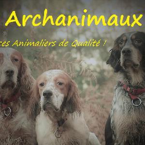 Promenade et garde d'animaux à Versailles et dans les Yvelines