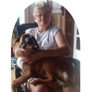 Educateur canin , dog sitting