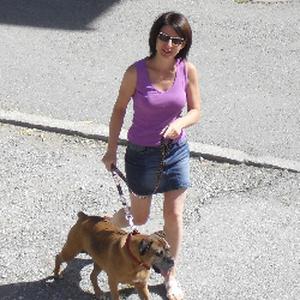 Garde d'animaux et  promenade