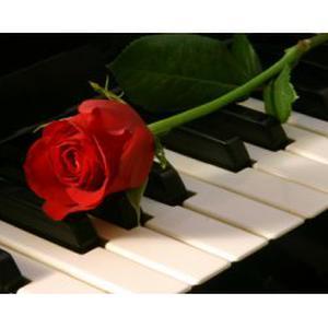 Je donne des cours de piano