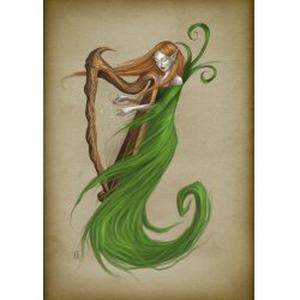 Cours de Harpe Celtique