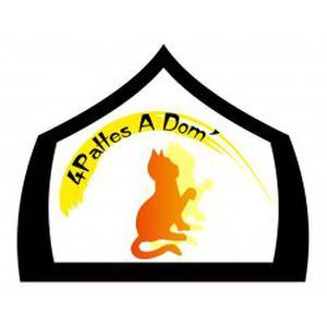 Garde d'animaux à domicile sur Angers