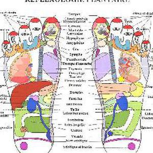 Massage des pieds chinois: Réflexologie Plantaire