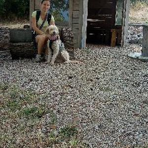 Au bonheur canin