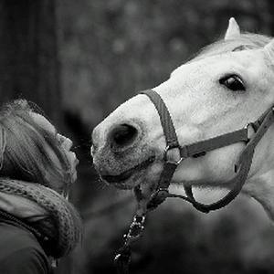 Passionnée d'animaux, je m'occuperai de votre animal comme si c'était le mien !