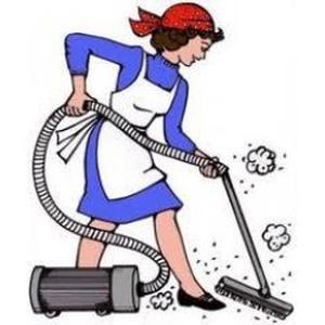 Aide ménagère dynamique et motivée