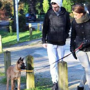 Pet Sitter, étudiant éducateur canin