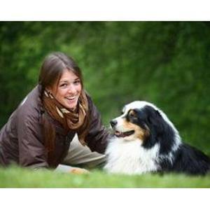 garde et promenade d'animaux