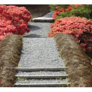 Cours de japonais debutant ou intermediaire...