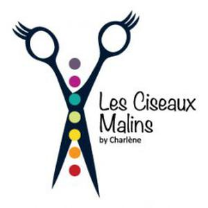Photo de Les ciseaux malins