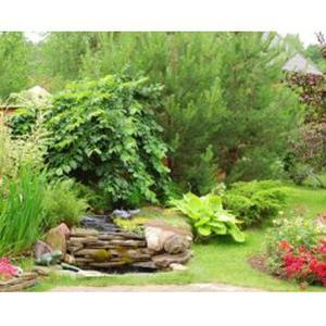 Jardinage entretien de votre jardin renovation de l'habitat
