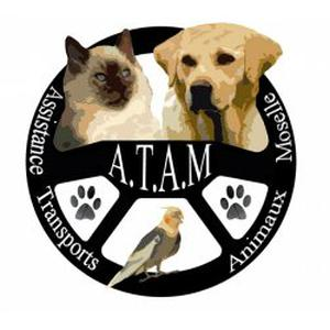 ATAM : Services animaliers, education canine, comportement