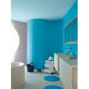 Traveaux interieur exterieur peinture papier peint