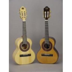 Cours de musique brésilienne (cavaquinho, guitare,chant ...)