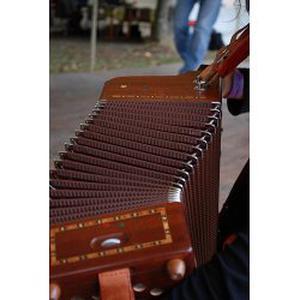 donnes cours particulier accordéon diatonique