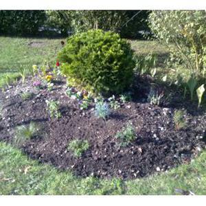 Jardinage, composition florale