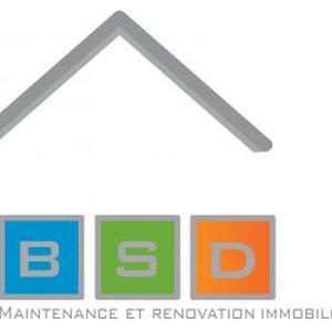 BSD: rénovation, dépannage, relamping, borne de recharge